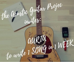 The Acustic Guitar Project